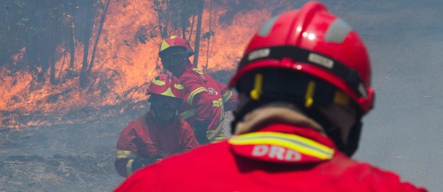 Gigantyczne pożary lasów w środkowej Portugalii pochłonęły już 62 ofiary śmiertelne, ale służby obawiają się, że ten tragiczny bilans jeszcze wrośnie. Rząd w Lizbonie ogłosił trzydniową żałobę narodową.