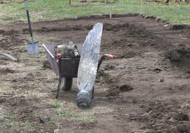 Kopał dół pod fundamenty domu, znalazł wrak samolotu. Niesamowite odkrycie pod Krosnem