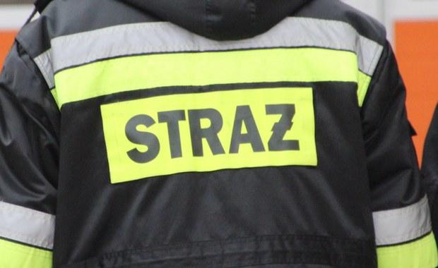 W czwartek rano zostanie wznowiona akcja poszukiwawcza na jeziorze Starganiec w Mikołowie (woj. śląskie). Informację o działaniach służb dostaliśmy na Gorącą Linię RMF FM.