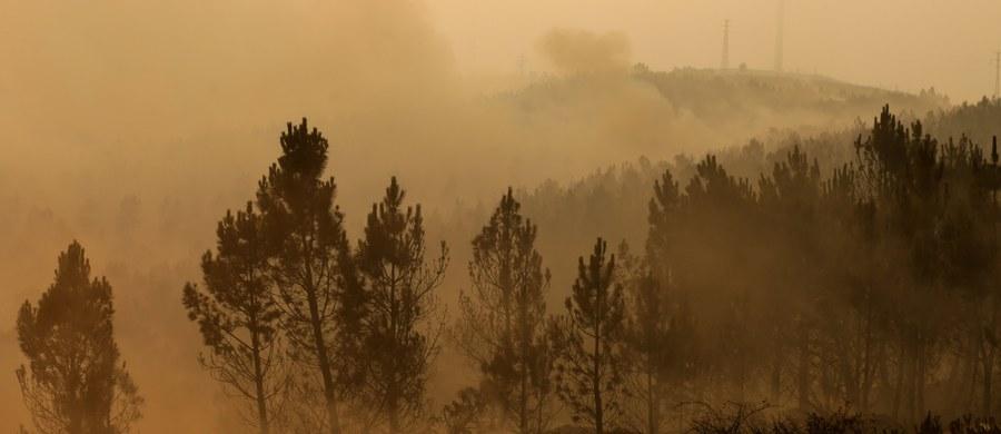Portugalskim strażakom udało się opanować duże ognisko pożaru lasów w okolicach miasta Gois w dystrykcie Coimbra, w środkowej części kraju. W środę zapanowano nad drugim głównym ogniskiem żywiołu - koło Pedrogao Grande w sąsiednim dystrykcie Leiria.