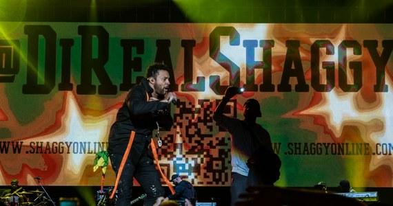 Najpierw rockowy pazur i chwytliwe gitarowe melodie. Później jamajskie rytmy i słoneczna aura na długo po zmroku. Shaggy, Mesajah, Maleo Reggae Rockers, Lao Che i inni zadbali o to, by w piątek Oświęcim rozpalił się do czerwoności w tym muzycznym pojedynku o festiwalową publiczność. Wygrali wszyscy - z fanami Tauron Life Festival Oświęcim 2017 na czele!