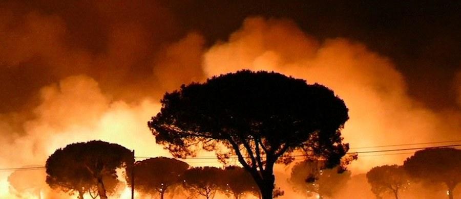 Kilkudziesięciu Polaków wypoczywających w hiszpańskim regionie Costa de la Luz w miejscowości Mazagón zostało ewakuowanych z powodu pożaru pobliskiego lasu - taką informację dostaliśmy na Gorącą Linię RMF FM od pana Tomasza. Hiszpańskie media donoszą o ewakuacji już około 2 tysięcy ludzi.