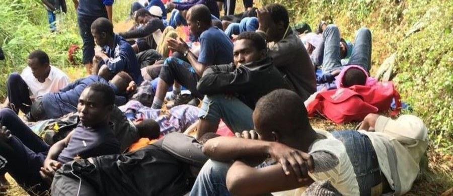 W wydanym w trybie pilnym orzeczeniu sąd w Lille na północy Francji nakazał władzom podjęcie natychmiastowych kroków w celu zapewnienia migrantom koczującym w Calais dostępu do wody pitnej, sanitariatów i pryszniców.