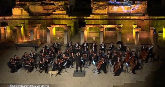 W Turcji pies wszedł na scenę podczas występu orkiestry na dorocznym Międzynarodowym Festiwalu Muzycznym w Izmirze. Orkiestra Wiedeńska była właśnie w połowie Włoskiej Symfonii Mendelssohna numer 4, gdy na scenie pojawił się niespodziewany gość. Pies spacerujący po scenie wzbudził śmiech, sympatię i wreszcie gorący aplauz publiczności. Czworonożny meloman zdecydował się położyć obok jednego ze skrzypków i w spokoju wysłuchać reszty utworu.