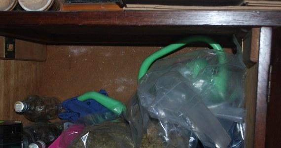 """107 kilogramów marihuany o wartości 3,2 mln złotych miał w budynku gospodarczym 34-letni Jakub J. ps. Ramirez zatrzymany w Bardzie Śląskim przez policjantów wrocławskiego CBŚP przy udziale dolnośląskiego USC. Jak ustalili funkcjonariusze, mężczyzna był """"magazynierem"""" grupy przestępczej, trudniącej się obrotem narkotykami na wielką skalę. """"Ramirez"""" po przedstawieniu zarzutów w Prokuraturze Rejonowej w Ząbkowicach Śląskich, decyzją sądu trafił do aresztu na 3 miesiące."""