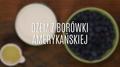Jak zrobić dżem z borówki amerykańskiej?