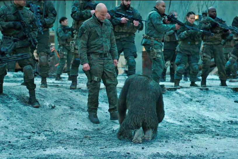 Poznaliśmy genezę i staliśmy się świadkami ewolucji, teraz nadszedł czas, by wyruszyć na wojnę. W trzecim filmie z przebojowej serii, która cieszy się uznaniem zarówno widzów, jak i krytyków, Cezar i jego małpy uwikłane zostają w zbrojny konflikt z armią ludzi.