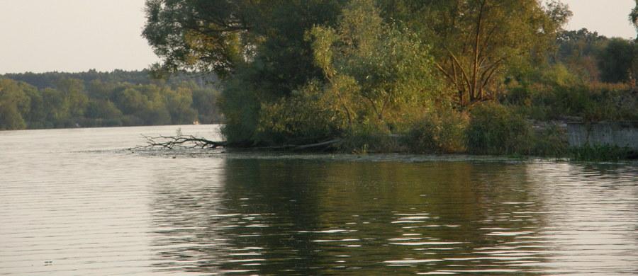 Nurkowie wyłowili ciało poszukiwanego 48-latka z Kalisza, który wskoczył do akwenu Piaski Szczygliczka koło Ostrowa Wielkopolskiego. Ratowników o zdarzeniu poinformowała żona mężczyzny.