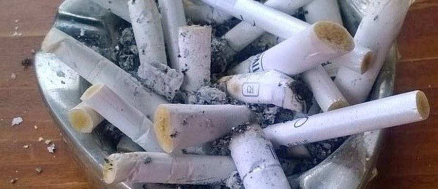 """Nie ma czegoś takiego jak granica, do której palenie papierosów może być bezpieczne. Wyniki badań wskazują, że osoby, które palą przez całe życie średnio poniżej jednego papierosa dziennie, aż o 67 procent zwiększają ryzyko przedwczesnej śmierci. W przypadku osób, które palą średnio od 1 do 10 papierosów dziennie ryzyko to w porównaniu do osób, które nigdy nie paliły rośnie o 87 procent. Naukowcy z National Cancer Institute (NCI), którzy publikują te dane na łamach czasopisma """"JAMA Internal Medicine"""" podkreślają, że zawsze warto rzucić palenie. Im wcześniej, tym lepiej."""