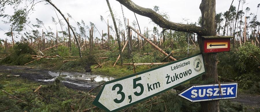 30 tys. hektarów lasów nadaje się do całkowitego odnowienia - informuje rzeczniczka Lasów Państwowych Anna Malinowska. Straty w drewnie to ok. 7 mln metrów sześciennych. Mogą być jednak wyższe, bo ciągle spływają meldunki z nadleśnictw.