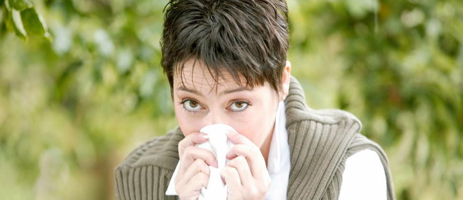 Czujesz się samotny? Postaraj się coś z tym zrobić, otworzyć się na innych. Wyniki badań naukowców z Ohio State University pokazują, że samotność to nie tylko przykre uczucie, ale stan, który wymiernie szkodzi zdrowiu. Jak ogłoszono podczas zjazdu Society for Personality and Social Psychology w Nowym Orleanie, podobnie, jak chroniczny stres samotność wywiera negatywny wpływ na pracę naszego układu odpornościowego.