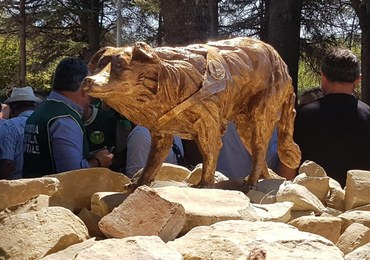 """W Amatrice odsłonięto pomnik psa ratownika. """"Stanowiła to, co najlepsze we Włoszech"""""""