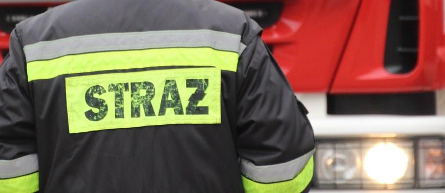 Karambol na obwodnicy Trójmiasta. Siedem samochodów zderzyło się między Osowa a Matarnią, na pasach w kierunku autostrady.