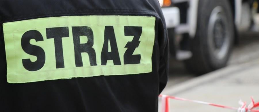 Ewakuacja kilkudziesięciu mieszkańców bloku w Lubaczowie na Podkarpaciu. Koparka wykopała tam niewybuch.