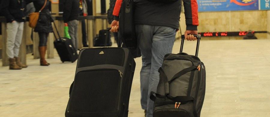 Pasażerowie podróżujący irlandzkim Ryanairem od 1 listopada będą mogli zabrać cięższy bagaż rejestrowany - jego limit wzrośnie z 15 kg do 20 kg - poinformowała linia. Jednocześnie nie wszyscy będą mogli wziąć na pokład samolotu dwie sztuki bagażu podręcznego.
