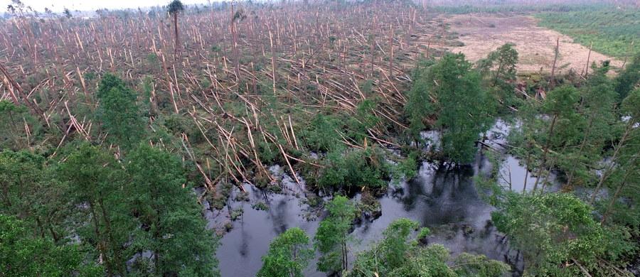 Gminy spustoszone przez nawałnicę z połowy sierpnia liczą nie tylko straty, ale i pieniądze, których nie dostaną w ramach podatku leśnego. Za każdy hektar lasu starszego niż 40 lat gminy dostawały pieniądze. Teraz, gdy większość drzew została zniszczona, nie będzie wpływów do budżetu.