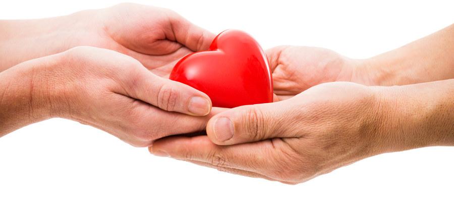 Serce, będące tylko jednym z wielu organów ludzkiego ciała, odgrywa niebagatelną rolę w jego prawidłowym funkcjonowaniu. Nie bez przyczyny potocznie sercem nazywamy centralną lub najważniejszą część czegoś – gdy cierpi serce, cierpi cały organizm.