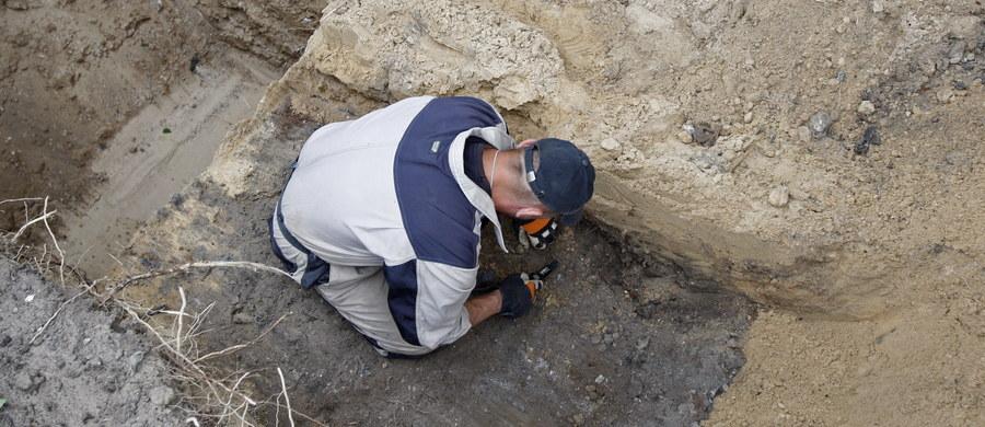 Szczątki 21 osób i drobne kości dwóch kolejnych odnaleziono w ramach prac ekshumacyjnych przeprowadzonych przez specjalistów IPN w Białymstoku. Prace miały związek ze śledztwem Instytutu dotyczącym zbrodni funkcjonariuszy miejscowego UB z lat 1944-54. Ekshumacje były prowadzone od 12 września w okolicach cmentarza prawosławnego przy ul. Wysockiego w Białymstoku, na kilku graniczących ze sobą posesjach, w tym na działkach prywatnych.