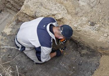 W Białymstoku odkryto szczątki ponad 20 osób. Poszukiwania będą kontynuowane