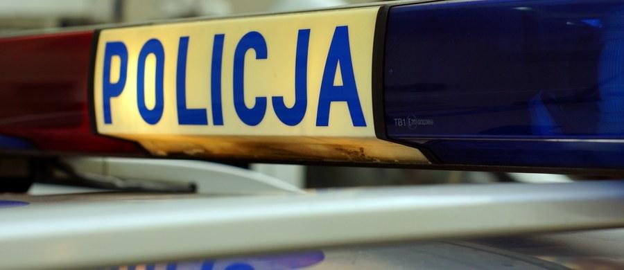 Policja zatrzymała mężczyznę, który rano w Perzanowie (woj. mazowieckie) podczas próby ujęcia chciał potrącić funkcjonariuszy. To 40-letni Piotr B., podejrzewany o wiele przestępstw. Mężczyzna nie stawiał oporu podczas zatrzymania.