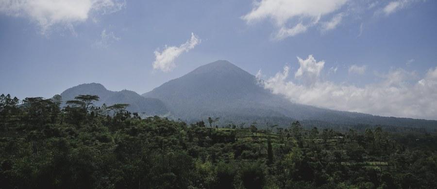 Z obawy przed erupcją wulkanu Agung na indonezyjskiej wyspie Bali z terenów wokół góry uciekło już ponad 96 tys. ludzi - podała indonezyjska agencja ds. klęsk żywiołowych. Każdego dnia odnotowuje się tam setki wstrząsów.