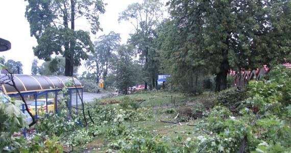 Nadciąga potężny niż Ksawery, który przyniesie wichury i ulewy. Mocno wiać ma w niemal całej Polsce - w porywach nawet do 100-130 km/h. Instytut Meteorologii i Gospodarki Wodnej - PIB wydał ostrzeżenia drugiego stopnia dla 12 województw.