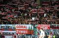 Armenia - Polska 1-6. Polscy kibice wdali się w bójkę na meczu
