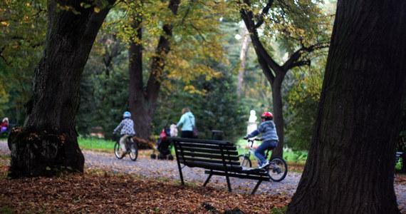 Najbliższe dni nie przyniosą niestety złotej, polskiej jesieni. Będzie chłodno, pochmurno i deszczowo.