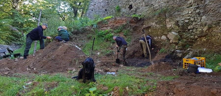 Miał być pod nią tajemniczy, ukryty tunel czy pozostałości z czasów II wojny światowej. Tymczasem pod niepozorną skarpą na podzamczu Zamku Grodno w Zagórzy Śląskim na Dolnym Śląsku odkryto prawdopodobnie najstarsze ślady istnienia grodu w tym miejscu. Jeżeli badania archeologów potwierdzą się, będą dowody na to, że zamek powstał o blisko sto lat wcześniej, niż mówią o tym dokumenty historyczne.