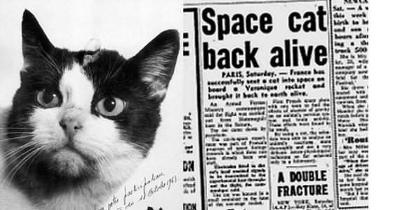 Zanim człowiek wyruszył podbijać przestrzeń kosmiczną, robiły to zwierzęta. Pierwszy kot został wysłany w kosmos ponad 50 lat temu. Zwierzak został zapomniany, ale teraz Matthew Serge Guy, dyrektor kreatywny jednej z agencji reklamowych w Londynie, postanowił uczcić pamięć czworonożnego astronauty i zorganizował zbiórkę na pomnik.
