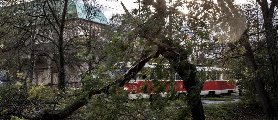 Silne wiatry osiągające w porywach prędkość nawet 200 km/h. uderzyły w niedzielę w Europie Środkowej. W Czechach zginęły dwie osoby przywalone spadającymi drzewami. W krajach regionu wichury spowodowały poważne utrudnienia w transporcie.