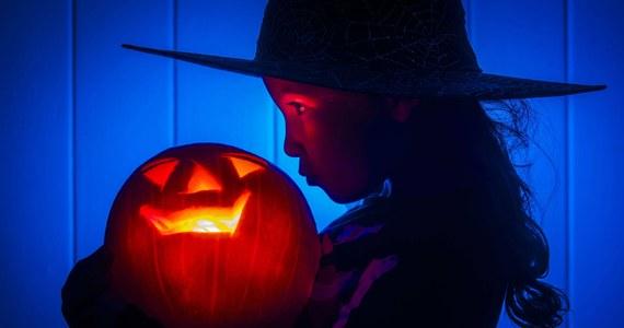 Halloween to pogański zwyczaj, niezgodny z naszą kulturą i tradycją – powiedział w rozmowie z PAP rzecznik Konferencji Episkopatu Polski, ks. Paweł Rytel-Andrianik. Jak dodał, obchody te są przeciwne atmosferze modlitwy i zadumy i niosą za sobą poważne konsekwencje.