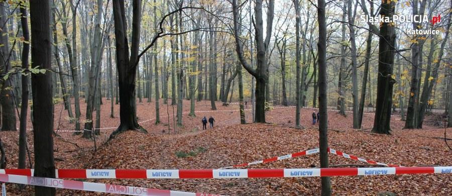 Szokujące wyniki sekcji zwłok mężczyzny, którego ciało znaleziono w środę w lesie w Katowicach. Wykazała ona liczne rany na ciele ofiary. Prokuratura wszczęła śledztwo w sprawie zabójstwa.