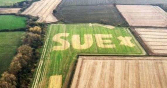 Nie UFO, a przeprosiny męża. Rozwiązano tajemnicę olbrzymiego napisu, jaki kilka dni temu pojawił się na polu uprawnym w angielskim hrabstwie Oxforshire.