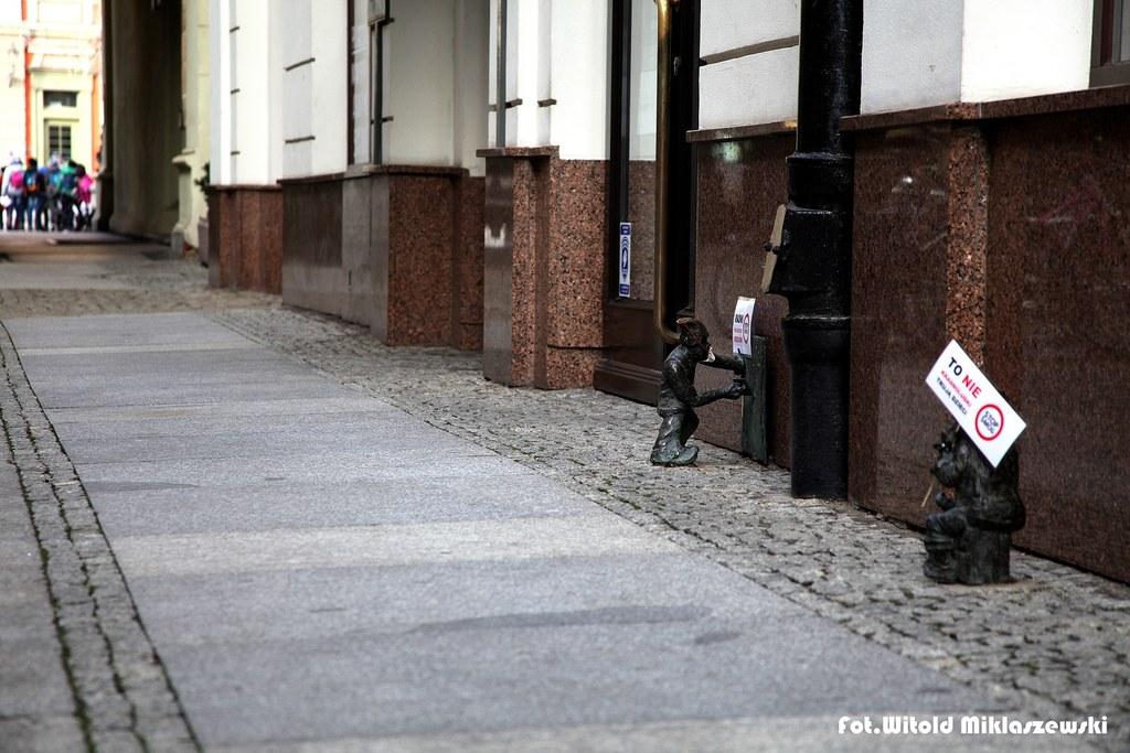 fot. Witold Miklaszewski
