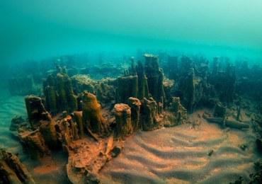 Tajemnicze odkrycie na dnie jeziora. To antyczna twierdza sprzed 3000 lat