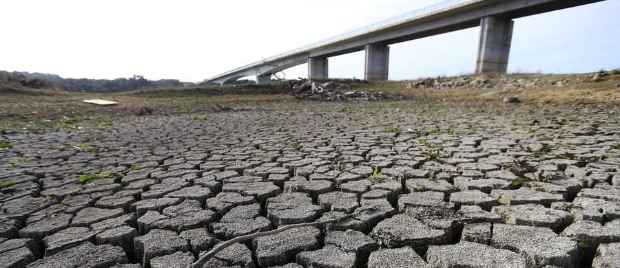 Utrzymująca się od kilkunastu miesięcy w Portugalii susza objęła już w stopniu ekstremalnym 95 proc. terytorium kraju. Miejscowi ekolodzy zwrócili się do władz Hiszpanii o informacje o poziomie wody w portugalskich rzekach zaczynających swój bieg w sąsiednim kraju.
