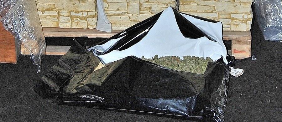 Blisko 80 kilogramów marihuany przejęli funkcjonariusze z Morskiego Oddziału Straży Granicznej. Aresztowany został już mężczyzna podejrzany o przemyt narkotyków. Pogranicznicy nie wykluczają kolejnych zatrzymań w tej sprawie.