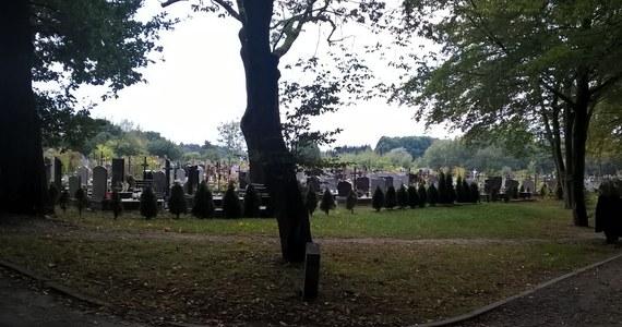 Policja odnalazła w Gdańsku kolejne szczątki, które mogą pochodzić z okradanych w ostatnich latach grobów zlokalizowanych głównie na terenie Pomorskiego. Jak nieoficjalnie dowiedział się reporter RMF FM Paweł Balinowski, zakopano je w okolicach przystanku PKM Brętowo. O zbezczeszczenie miejsc pochówku poprzez kradzież szczątków podejrzany jest 54-letni gdańszczanin. Mężczyzna został zatrzymany w pierwszych dniach listopada. Wówczas policja przedstawiła mu sześć zarzutów związanych ze zbezczeszczeniem miejsc pochówku.