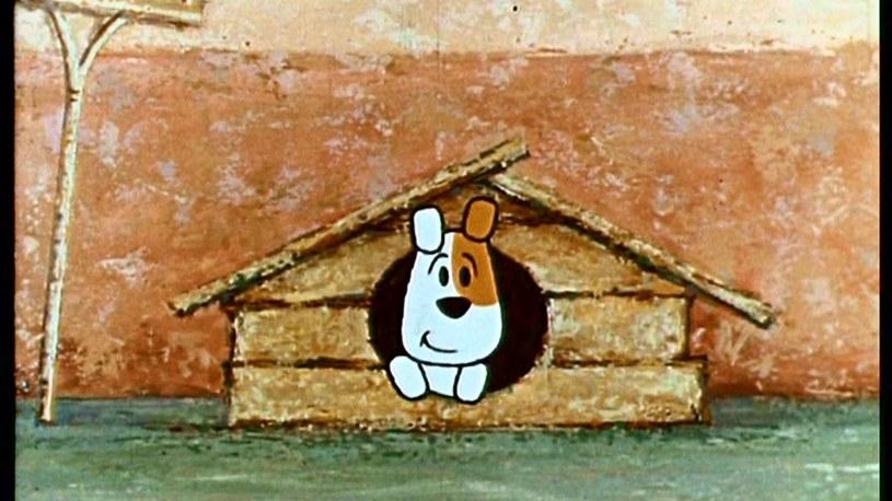 Popularny bohater kreskówek Reksio kończy 50 lat! Z tej okazji pierwsze w kraju Muzeum Dobranocek w Rzeszowie zaprasza, w imieniu jubilata, na urodzinowe imprezy. Będzie to okolicznościowa wystawa i widowisko muzyczno-teatralne.