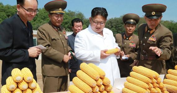 """Nowe sankcje ONZ nałożone na Koreę Północną są """"aktem wojny"""" i oznaczają """"całkowitą blokadę gospodarczą"""" kraju - oświadczyło w niedzielę północnokoreańskie MSZ w komunikacie opublikowanym przez oficjalną agencję prasową KCNA."""