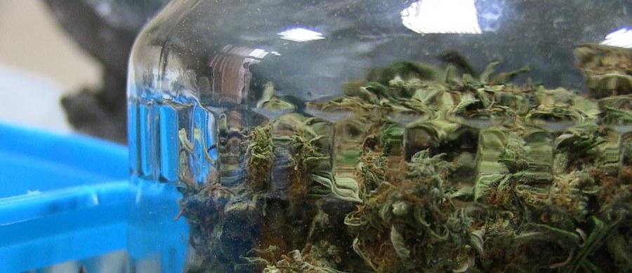 Warszawska prokuratura okręgowa przesłała do sądu w Katowicach akt oskarżenia przeciwko 21 osobom - zarówno kurierom, którzy przemycili do Polski 433 kg marihuany,  jak i dilerom. Narkotyki trafiały do Polski z Holandii; przewożone były w specjalnych skrytkach samochodowych.