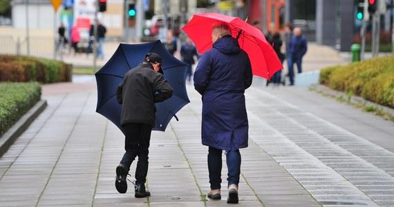Kolejny zimowy tydzień upłynie pod znakiem dodatnich temperatur. We wtorek trochę powieje, a w środę popada.