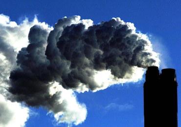 Bakteria pomoże w walce z ociepleniem klimatu?