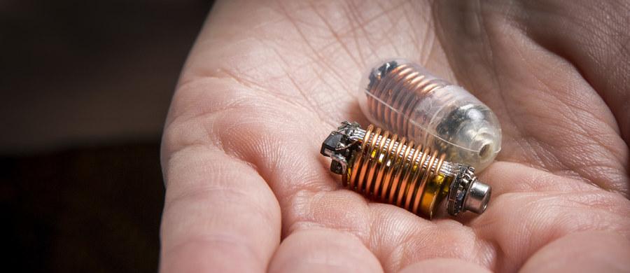 """Elektroniczne pigułki, monitorujące stan układu pokarmowego, nie są szczególnie nowym pomysłem. Prace nad tego typu aparaturą trwają już od lat. Naukowcy z Royal Melbourne Institute of Technology (RMIT University) skonstruowali teraz pigułki, które po raz pierwszy mogą monitorować obecne w układzie pokarmowym gazy. Pomyślne wyniki pierwszych testów wskazują, że tego typu urządzenia mogą pomóc dokładniej diagnozować możliwe zaburzenia. Pisze o tym w inauguracyjnym numerze czasopismo """"Nature Electronics""""."""