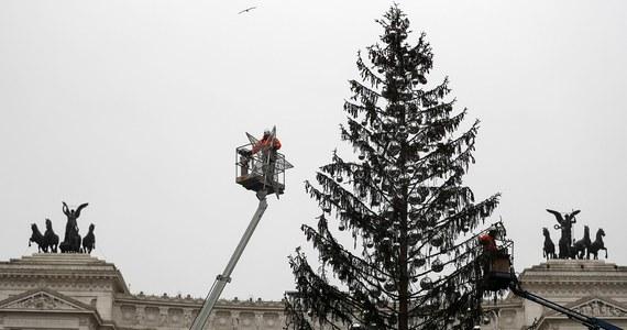 Znów zamieszanie w związku z choinką z Placu Weneckiego w Rzymie. Drzewko uschło zaraz po ustawieniu. Gdy zaczęto rozbierać je z dekoracji, władze kazały znów je nałożyć.