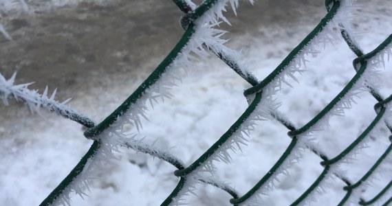 Zachmurzenie, opady śniegu lub śniegu z deszczem i minusowe temperatury - zbliżający się weekend przyniesie namiastkę zimowej aury.