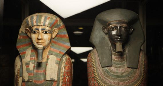 Dwie przechowywane w Wielkiej Brytanii egipskie mumie mogą dowodzić o skandalu obyczajowym sprzed 4 tysięcy lat? Nowoczesne badania DNA wykazały, że bracia pochowani tuż obok siebie w jednym grobowcu mieli różnych ojców. Zgodnie z inskrypcją odkrytą na sarkofagu, ich matka nazywała się Khnum-aa. Nieznany z imienia ojciec był lokalnym zarządcą.