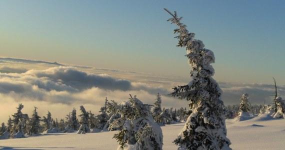 Miłośnicy białego szaleństwa wreszcie doczekali się prawdziwych opadów śniegu. Ale czy zima zagości w naszym kraju na dłużej? A może lepiej schować narty i sanki do piwnicy?