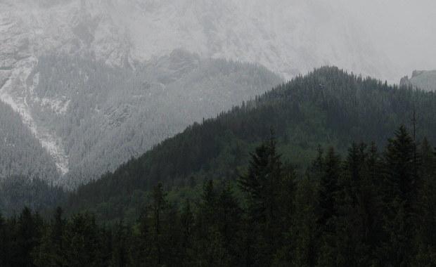 Zakopiańska prokuratura umorzyła postępowanie w sprawie ludzkich szczątków odnalezionych we wrześniu w Dolinie Roztoki w Tatrach. Na podstawie zebranych materiałów śledczy nie są w stanie ustalić przyczyn śmierci - powiedziała PAP szefowa prokuratury Barbara Bogdanowicz.